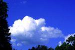 Il 2 febbraio è la sesta domenica ecologica