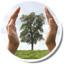 icona sostenibilità ambientale