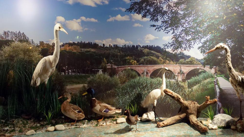 Museo dell' Ecologia